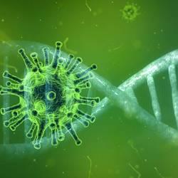 coronavirus 4833754 1920 ©Bild von Pete Linforth auf Pixabay