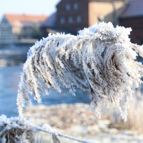 Winter in Sallmannshausen